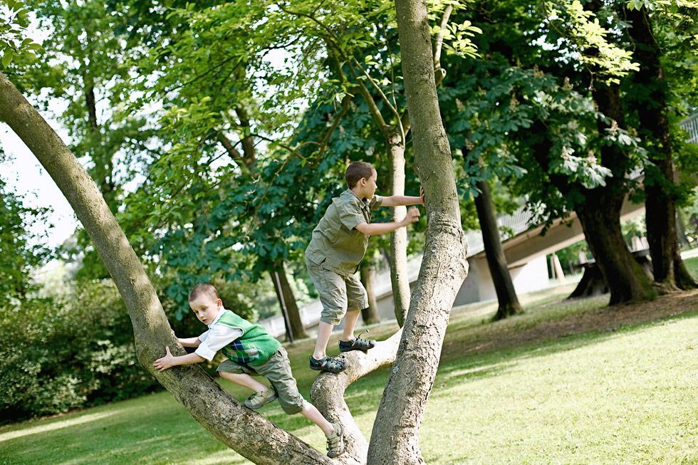 Synové Zuzky lezou po stromě v parku