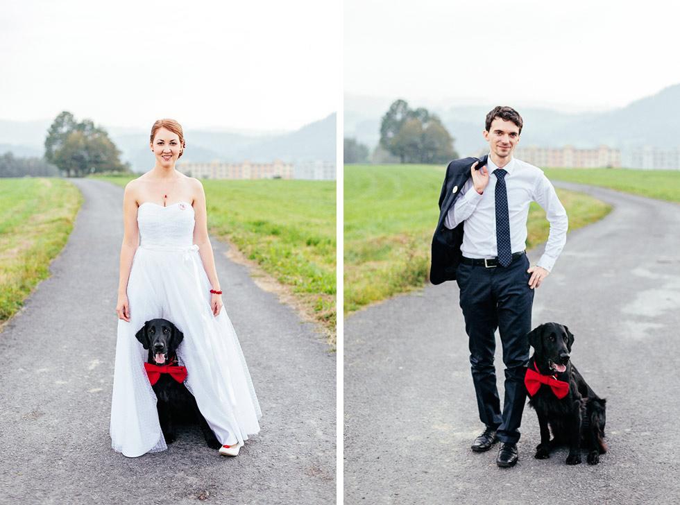 Portrét svatebního hafana