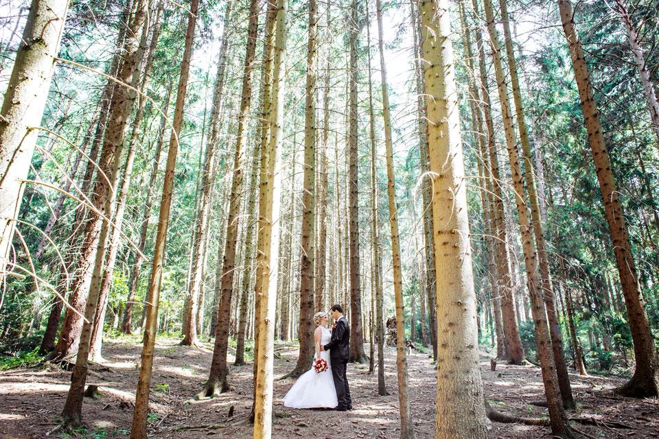 Minimalistický lesní portrét nevěsty a ženicha