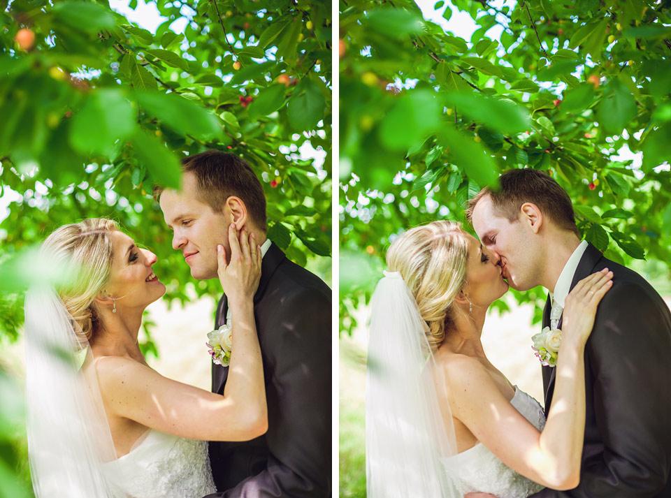 Políbení nevěsty pod třešní