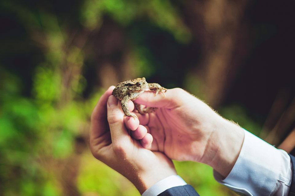 Znáte pohádku o políbené žábě?