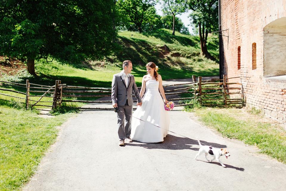 Na procházce s hafanem směrem ke svatebnímu focení