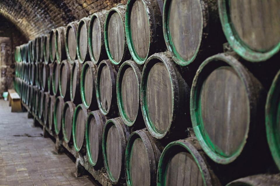 Vinný sklep je bez viny