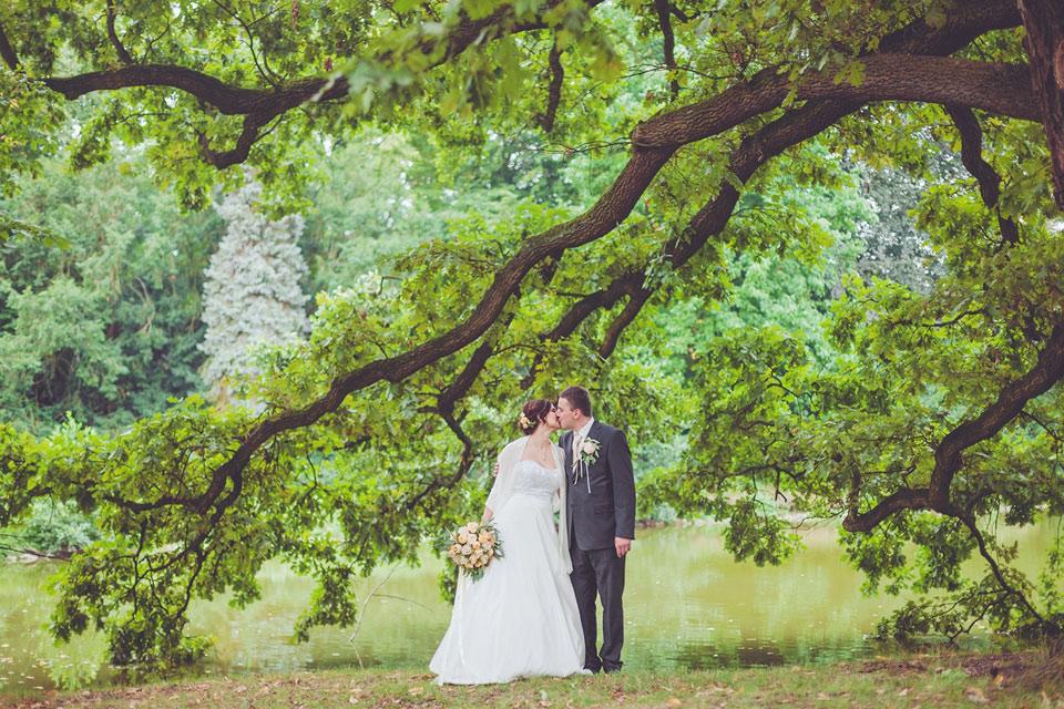 Ženich líbá nevěstu pod stromem v parku