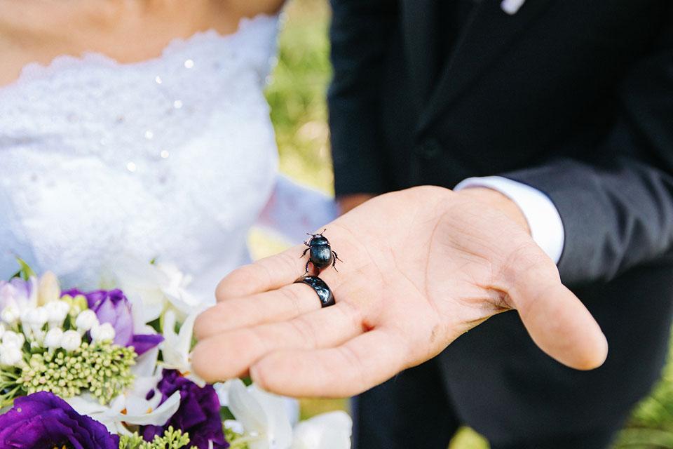 126-jesenicky-svatebni-brouk