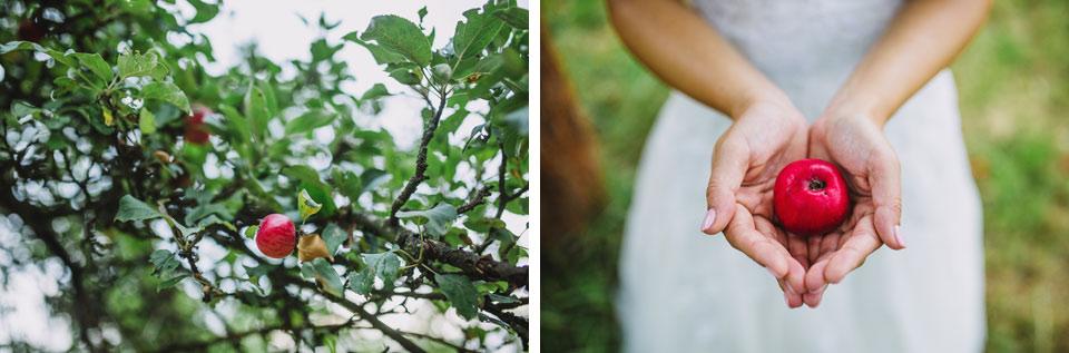 47-svatebni-fotografie-z-ovocneho-sadu